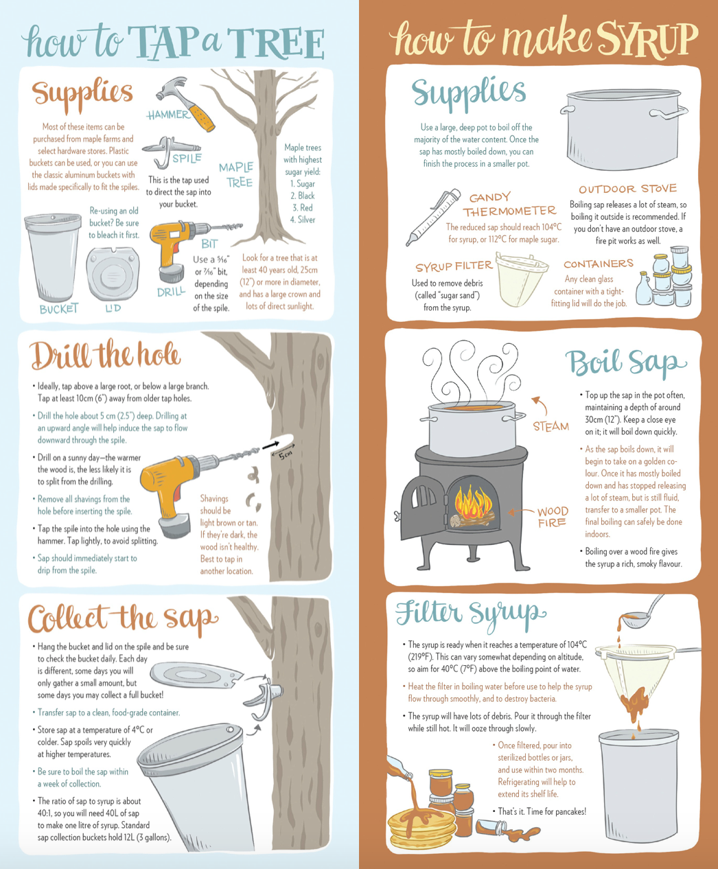 how to tap a tree and how to make maple syrup